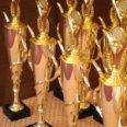 Переможці опитування журналістів «Український туризм – 2010 очима української преси»