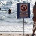 «Акула ждет» или 7 ночей в Египте за… $225