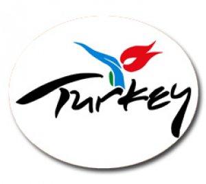 Туристический поток из Украины в Турцию вырос на 20,7%